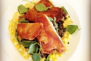 Roasted chicken with sweet corn.