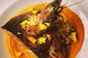 Pan-seared trout with prawns and squash puree.